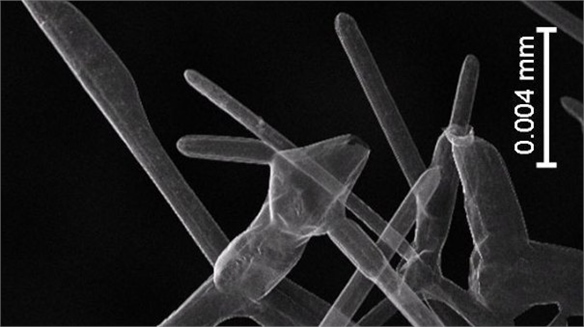 Aerographite: World's Lightest Solid Material