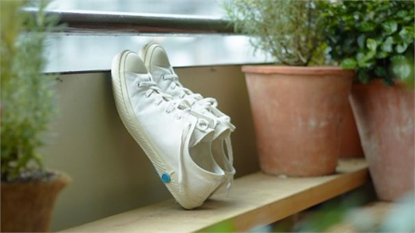 Kiln-Baked Canvas Sneakers