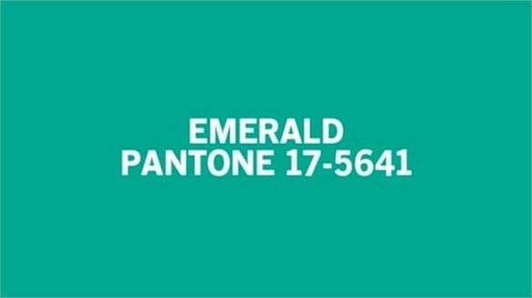 Pantone Announces Colour of the Year 2013