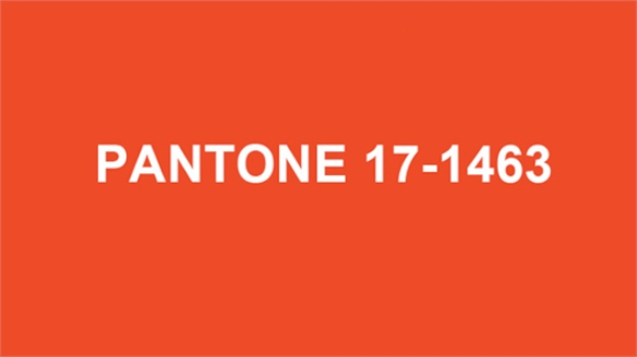 Pantone Announces Colour of the Year 2012