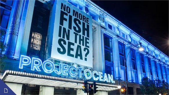 Project Ocean, Selfridges: Retail Activism in Action