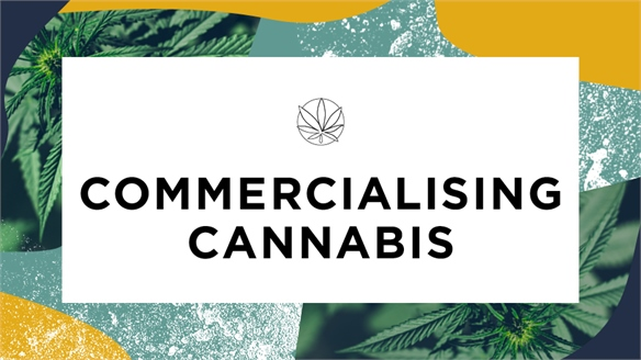 Commercialising Cannabis