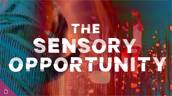 The Sensory Opportunity