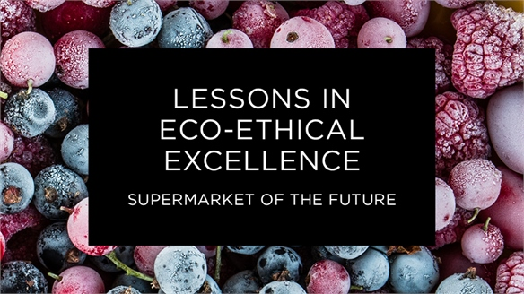 Supermarket of the Future: Lessons in Eco-Ethical Excellence