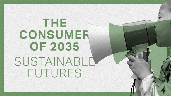 The Consumer of 2035: Sustainable Futures