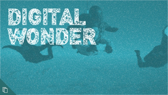 Digital Wonder