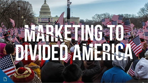 Marketing to Divided America