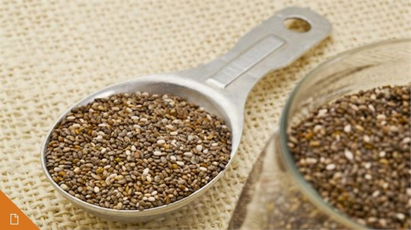 Chia: The New Superfood