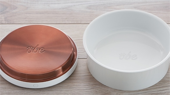 Smart Food Bowl Tracks Pet Health