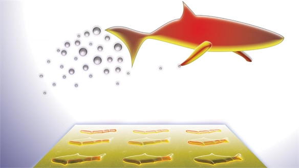 Robot Fish: New Medicine?
