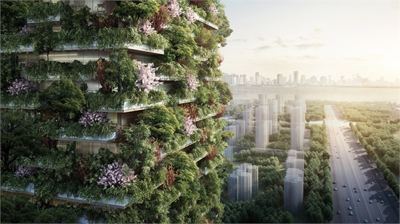 China's Forest Cities