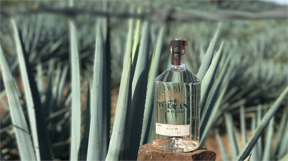 Moët Hennessy Becomes Tequila Producer