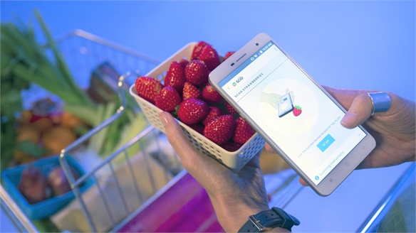 Food-Scanning Smartphone Uses Spectrometry