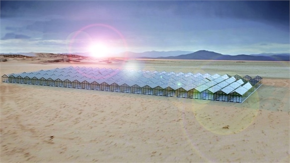 Self-Powered Solar Glass Greenhouse