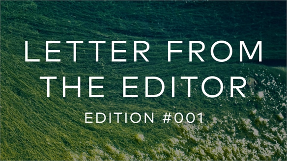 Letter from the Editor: Edition 001