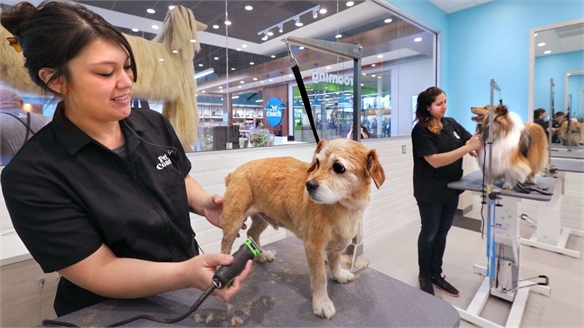 Petco Opens a Service-Led Wellbeing Store for Animals