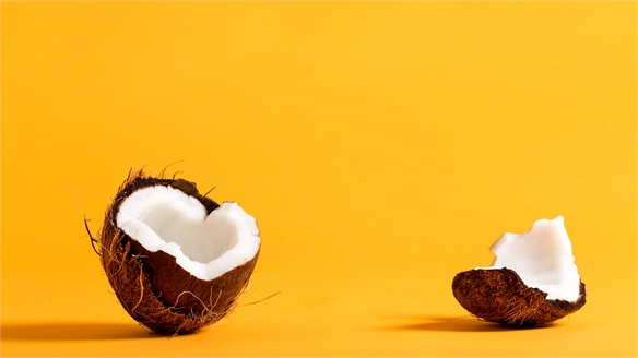 New Eco-Material Made from Coconut Waste