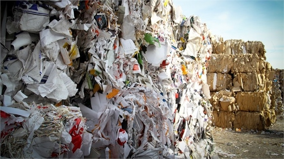Sustainability Summit Advocates Monetising Waste