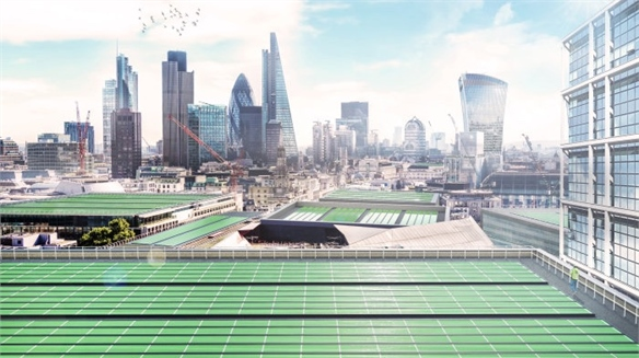 Solar Panels Turn Pollution into Food