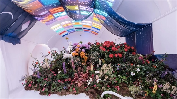 Horticulture Cool: Chelsea Flower Show Brand Concepts
