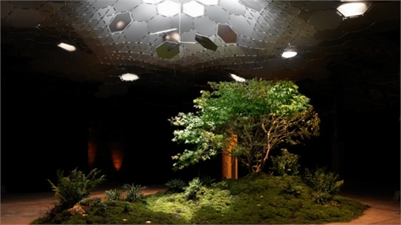New York's Solar-Powered Underground Park