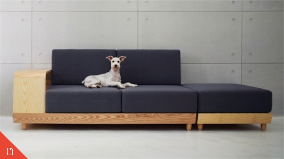 Pet Design: A Growing Market