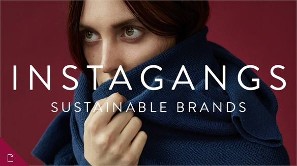 Instagangs: Sustainable Brands