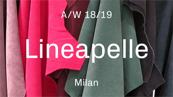 Lineapelle A/W 18/19