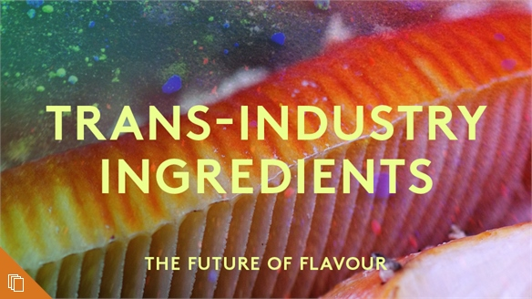 Trans-Industry Ingredients