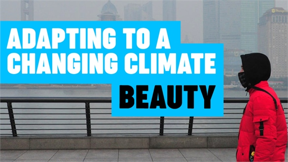Adapting to a Changing Climate: Beauty