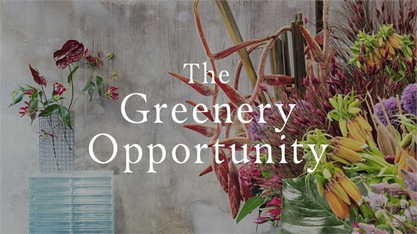 The Greenery Opportunity