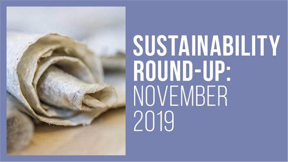 Sustainability Round-Up: November 2019