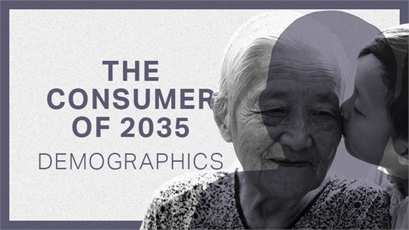 The Consumer of 2035: Demographics