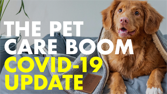 The Pet Care Boom: Covid-19 Update