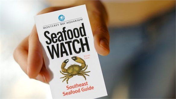 Social Seafood: Tracing, Tracking and Mapping