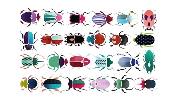 Insects in Design