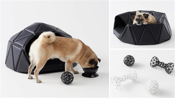 Heads or Tails: Nendo for Dogs