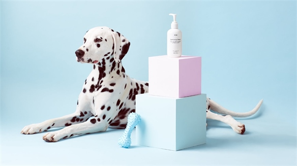 Mr.Paw: Luxury Grooming