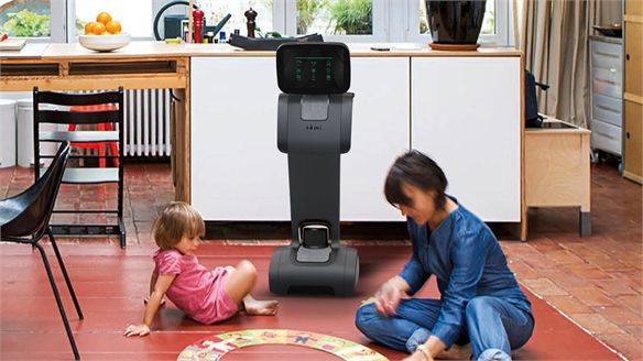 Temi: At-Home Robot Helper