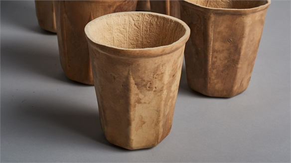 Biodegradable Coffee Cups Grown from Fruit
