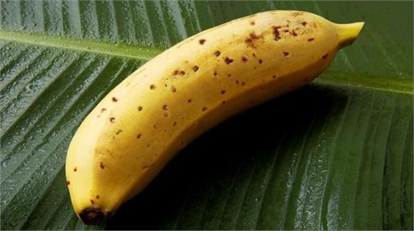 Edible Banana Peel