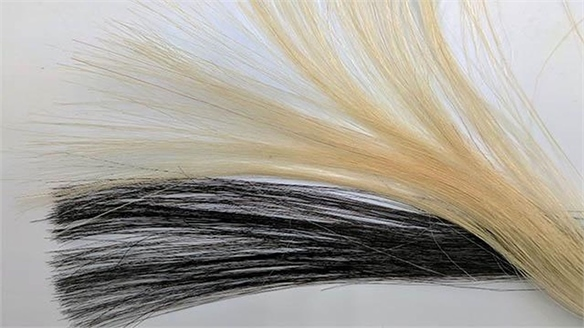 Graphene Hair Dye: Non-Toxic & Non-Damaging Hair Colour