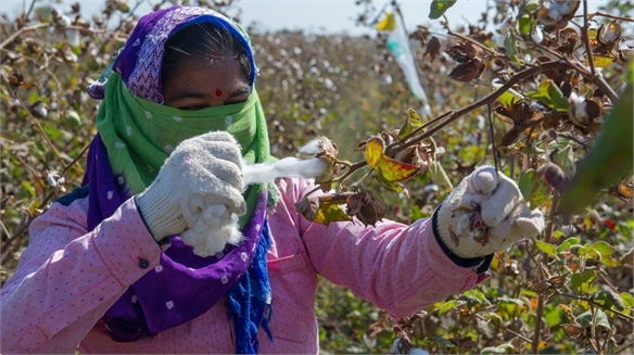 Primark Ramps Up Sustainable Cotton Initiative