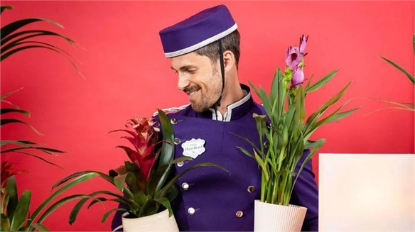 Patch Opens A Hotel for Houseplants