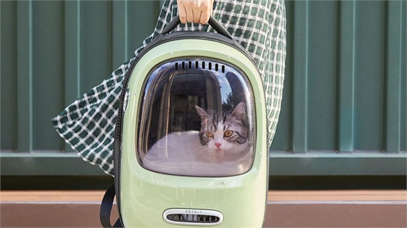 New Products Cater to On-the-Go Pets